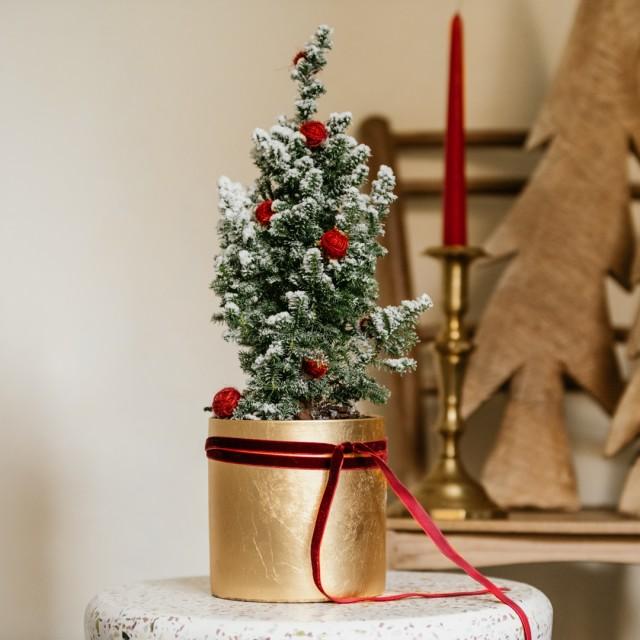 Vaso dorato di Natale con conifera innevata